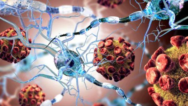 Breaking News: a Lisbona presentati i risultati di uno studio multicentrico: stop alla sclerosi multipla con le cellule staminali