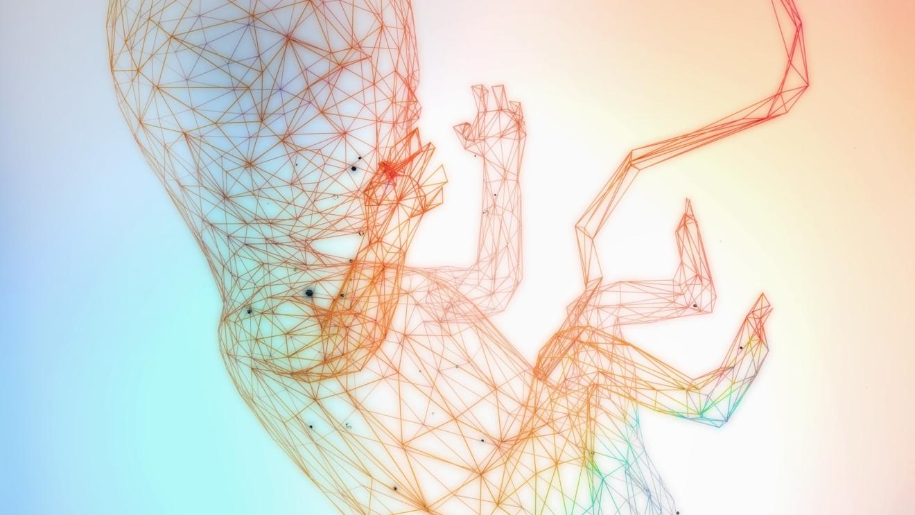 Uso delle cellule mesenchimali da tessuto cordonale